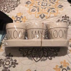 "Rae Dunn plant pots ""Bloom Baby Bloom"""